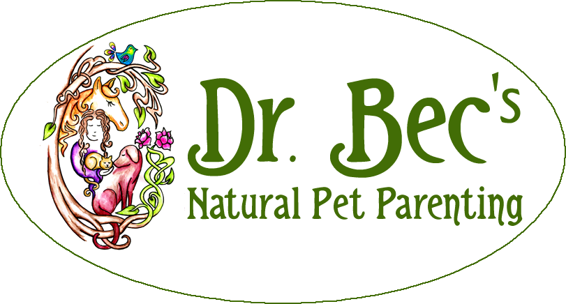 Holistic Veterinary Pet Care, Herbal Medicine and Acupuncture.